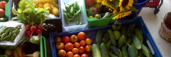 Healthy Produce, Grants Program